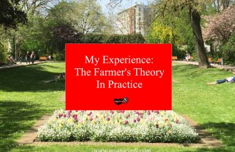 my-experience-the-farmer's-theory-in-practice