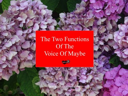 the-two-functions-of-the-voice-maybe