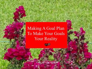 How to make plan for your goals