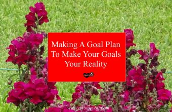 making-a-goal-plan-to-make-your-goals-your-reality