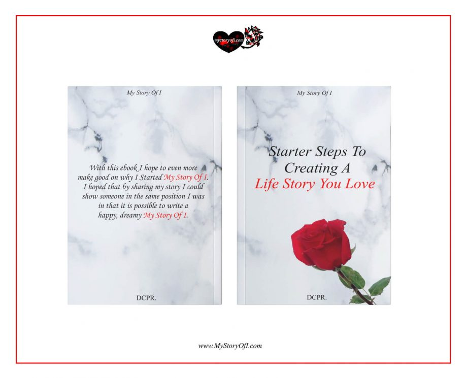 Cover of Starter Steps To Creating A Life Story You Love